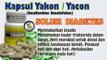 vid_yakon_video
